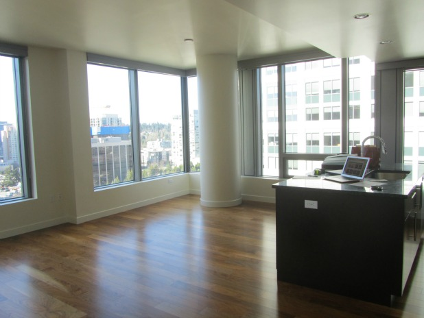 Small Space Urban Condo Downsizing Before
